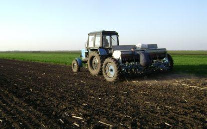 Subvenție de 24.000 de euro/ha! Cine sunt fermierii români care vor încasa banii?