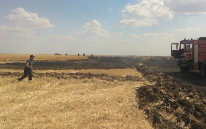 40 de hectare de grâu, arse într-un incendiu provocat