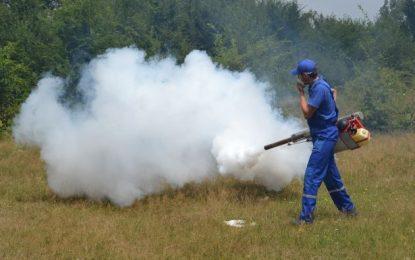 Primăria Călărași execută noi tratamente de dezinsecție pentru combaterea țânțarilor