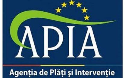 APIA:Pentru a primi banii pe 2015, rentierii agricoli trebuie să își vizeze carnetele