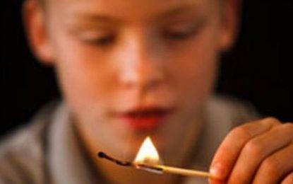 Jocul unui copil cu chibriturile a dus la arderea unui depozit de plante furajere