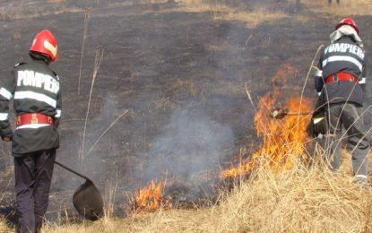 Modelu/Cinci ore de luptă cu focul pe 15 hectare