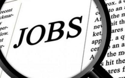 Joburi în străinătate/1455 de locuri de muncă vacante