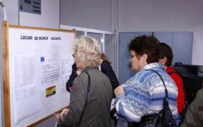 AJOFM Călărași/7244 șomeri, înregistrați la 31 iulie