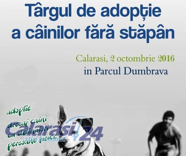 afis-targ-adoptii