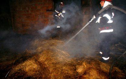 Dor Mărunt/Joaca unui copil cu chibriturile a provocat un incendiu la un depozit de plante furajere