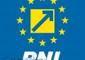 PNL Călărași/Targetul lui Drăgulin la parlamentare:14 000 de voturi
