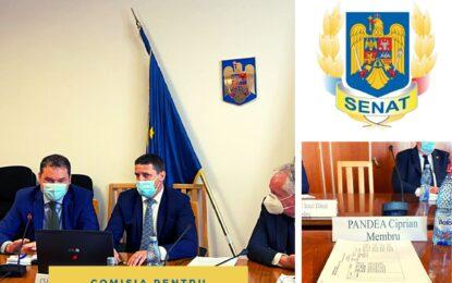 """Senator Pandea: """"O serie de măsuri importante vor fi implementate de Guvernul României, respectiv MDLPA"""""""
