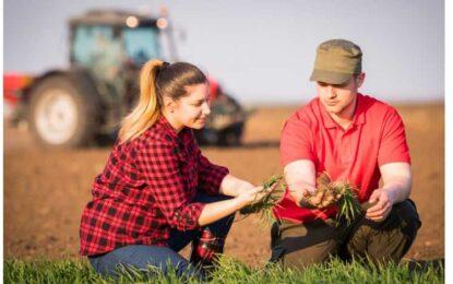 Fondurile nerambursabile prin AFIR pentru tinerii fermieri și fermele mici/Demersuri concrete pe care trebuie să le parcurgă un solicitant