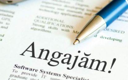 AJOFM Călărași/Ce riscă angajatorii care nu declară locurile de muncă vacante