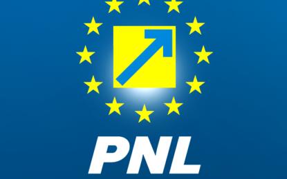 """Grupul consilierilor locali PNL: vot negativ pentru 5 concesionări de terenuri cu """"dedicație"""" pentru ruda unui consilier PSD"""
