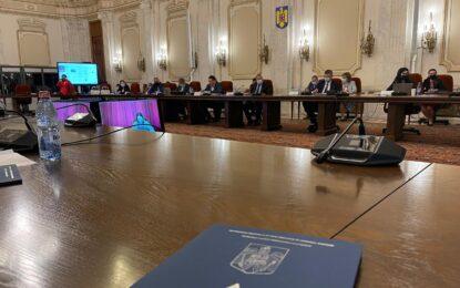 """Senator Pandea: """"De activitatea ANRE depinde formarea unor prețuri corecte pentru consumatori"""""""